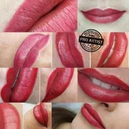 lips 2